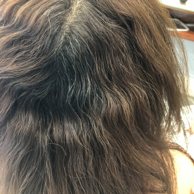 Brazilian Blowout Professional Split End Hair Repairing